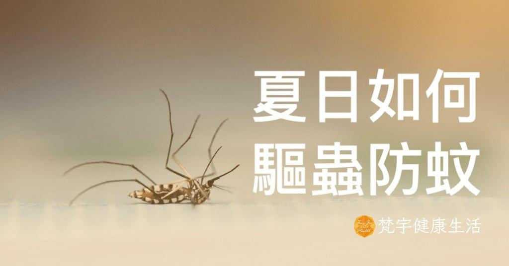 精油 Plant Therapy 防蚊